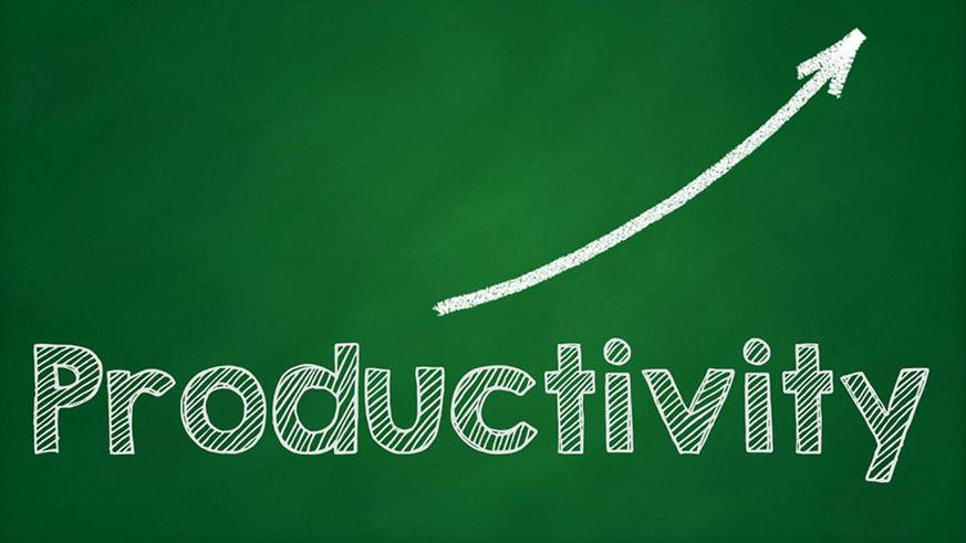 startup productivity